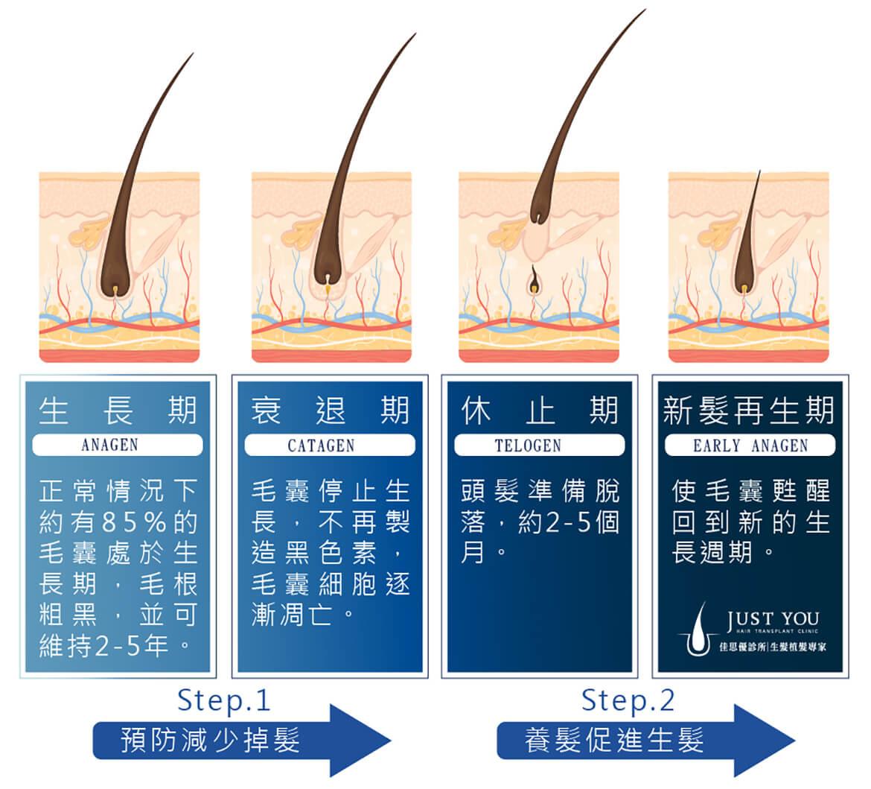 低能量雷射生髮原理
